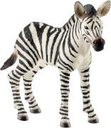 Schleich Wild Life 14811 Zebra Fohlen, ab 3 Jahre