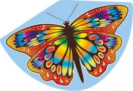 Günther Einleinerdrachen Papillon, 92x62cm