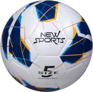 DFB Foto-//Unterschriften-Ball 2018 Gr.5